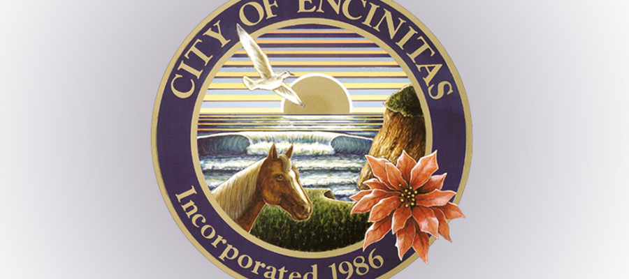 Encinitas to hold district elections in November