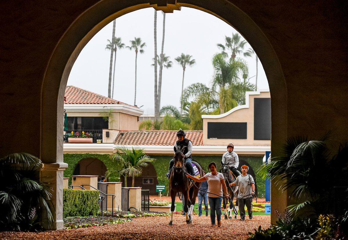 Fall thoroughbred season out of the gate at Del Mar racetrack