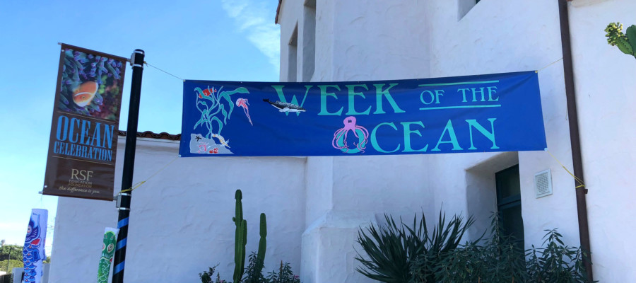It's all about Ocean Week