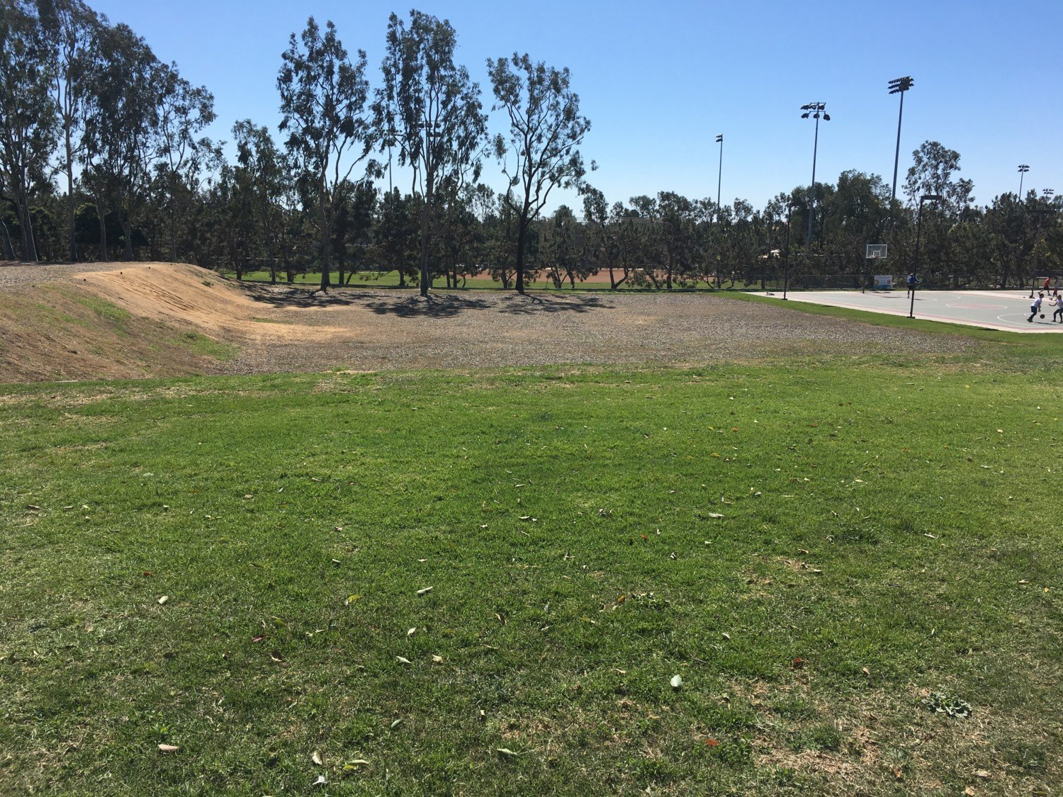 Council OKs revised plans for Aviara, Poinsettia parks projects