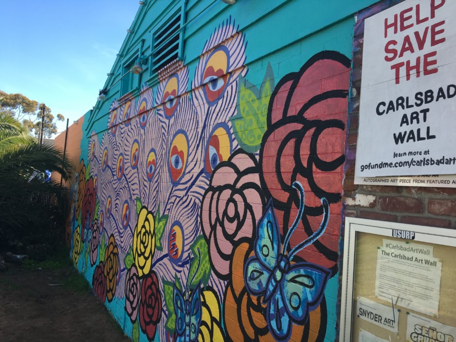 Art Wall founder on a mission to raise funds