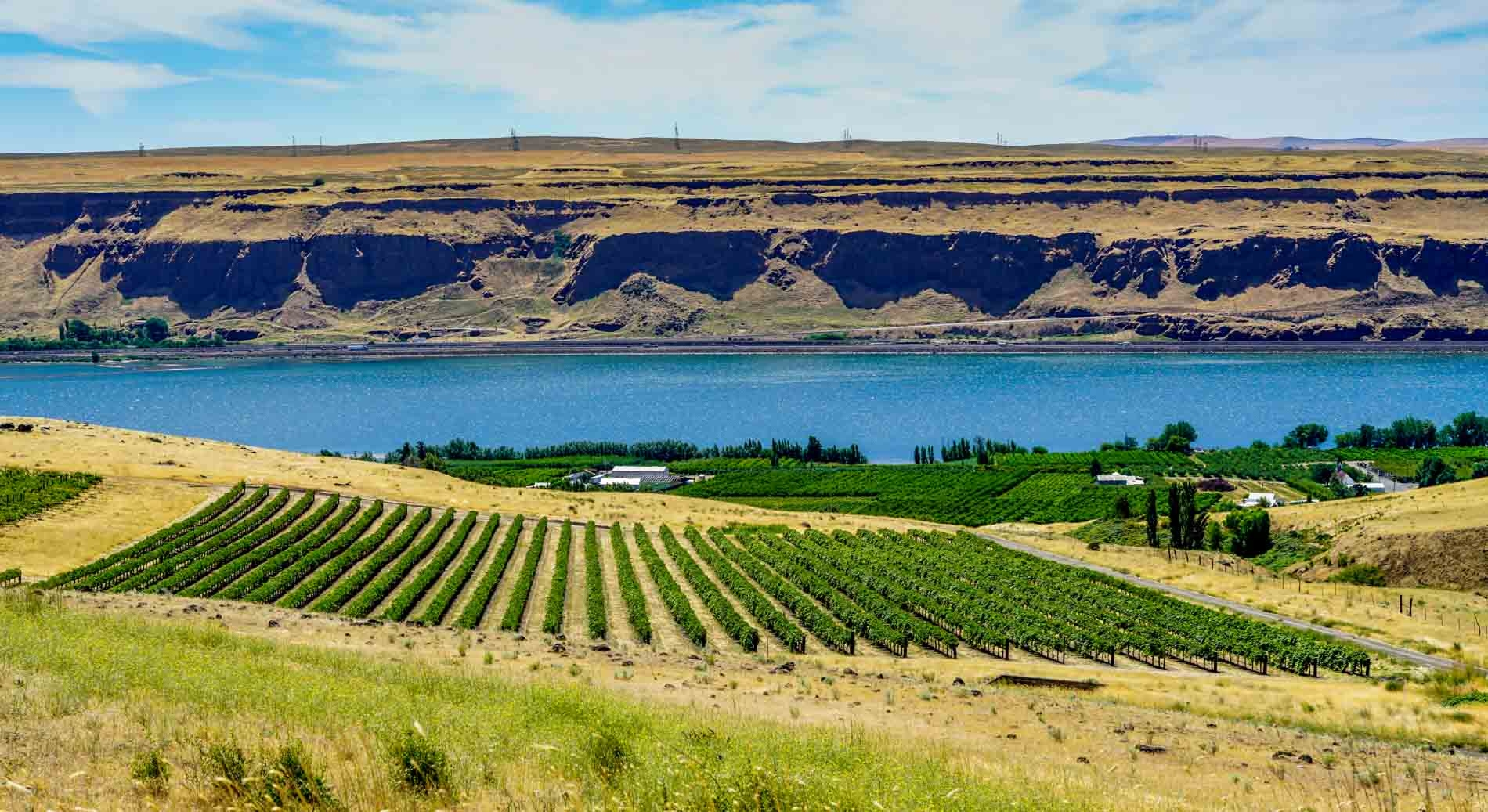 Taste of Wine: Pacific Northwest continues to impress