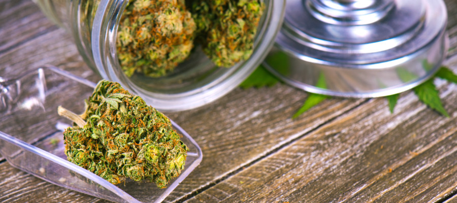 City Council moves closer to approving ballot measures on pot shops