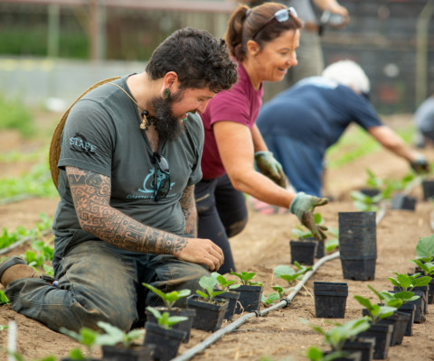 Coastal Roots Farm dedicated to sustainability, charity and tradition