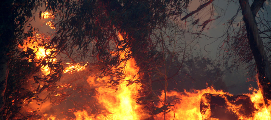 Three fires continue to burn on Camp Pendleton