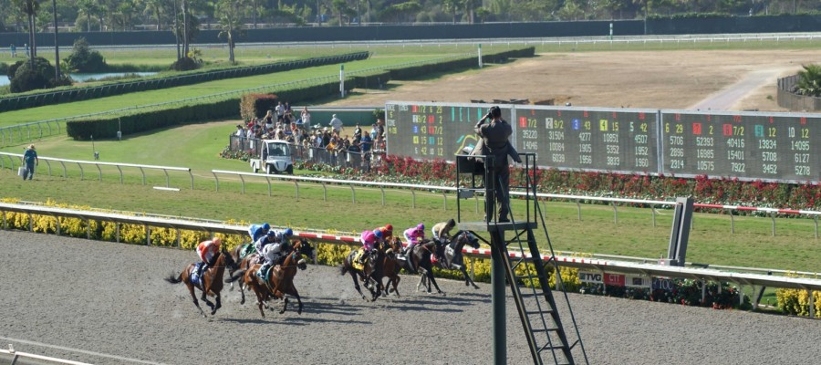 Horse collapses, dies on Del Mar racetrack, jockey Espinoza injured