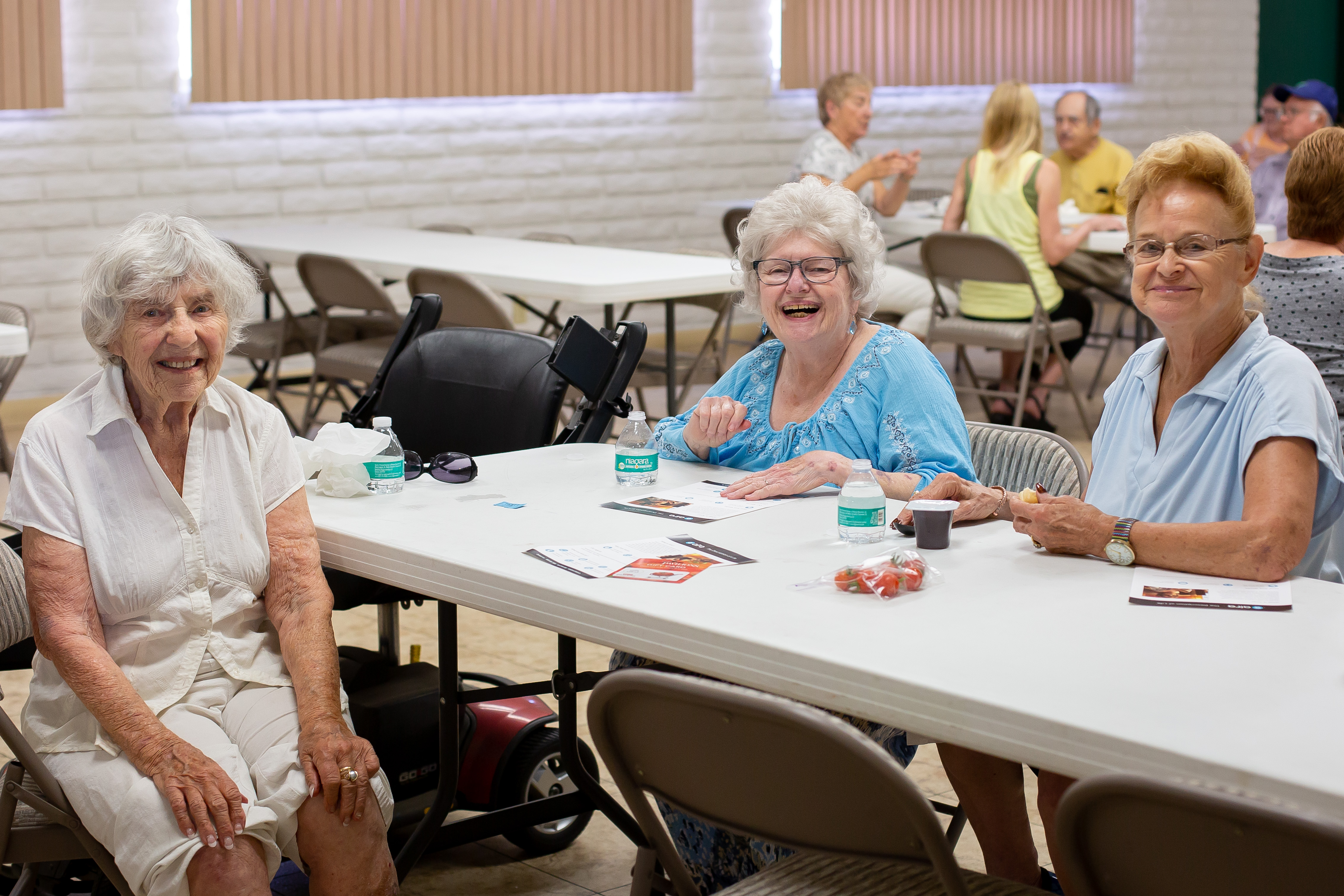 Groups team up to provide lunches for North County seniors