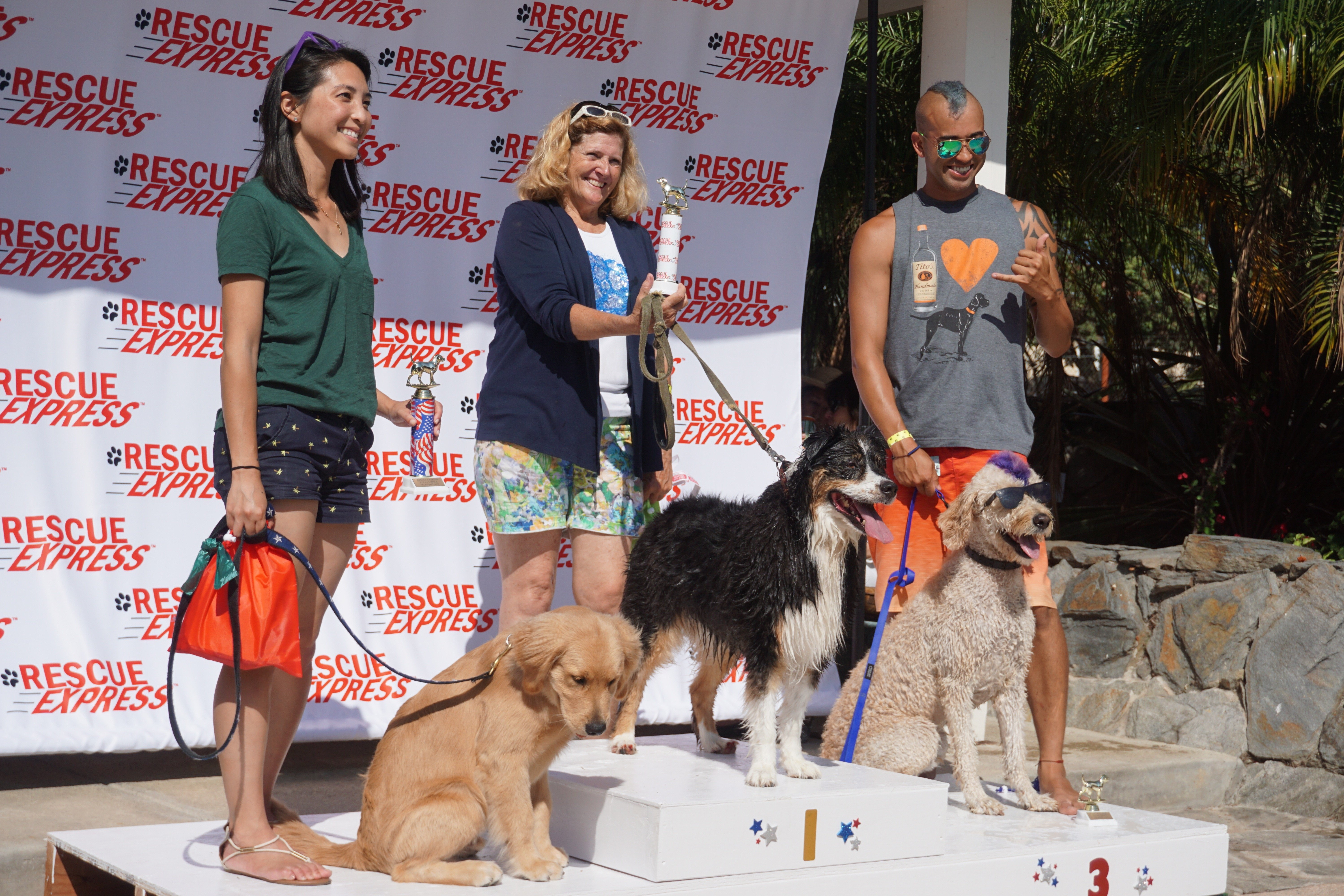 Pup Olympics fetch funds for transporting adoptable animals