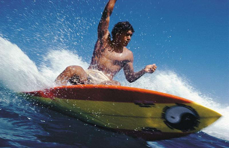 Surf museum welcomes Silver Surfer winners