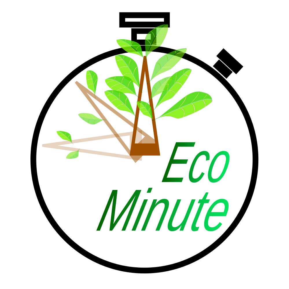 Eco Minute: New life for an old idea