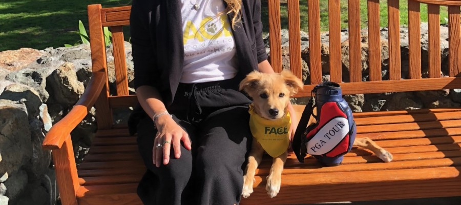 FACE Foundation readies for 7th annual golf benefit