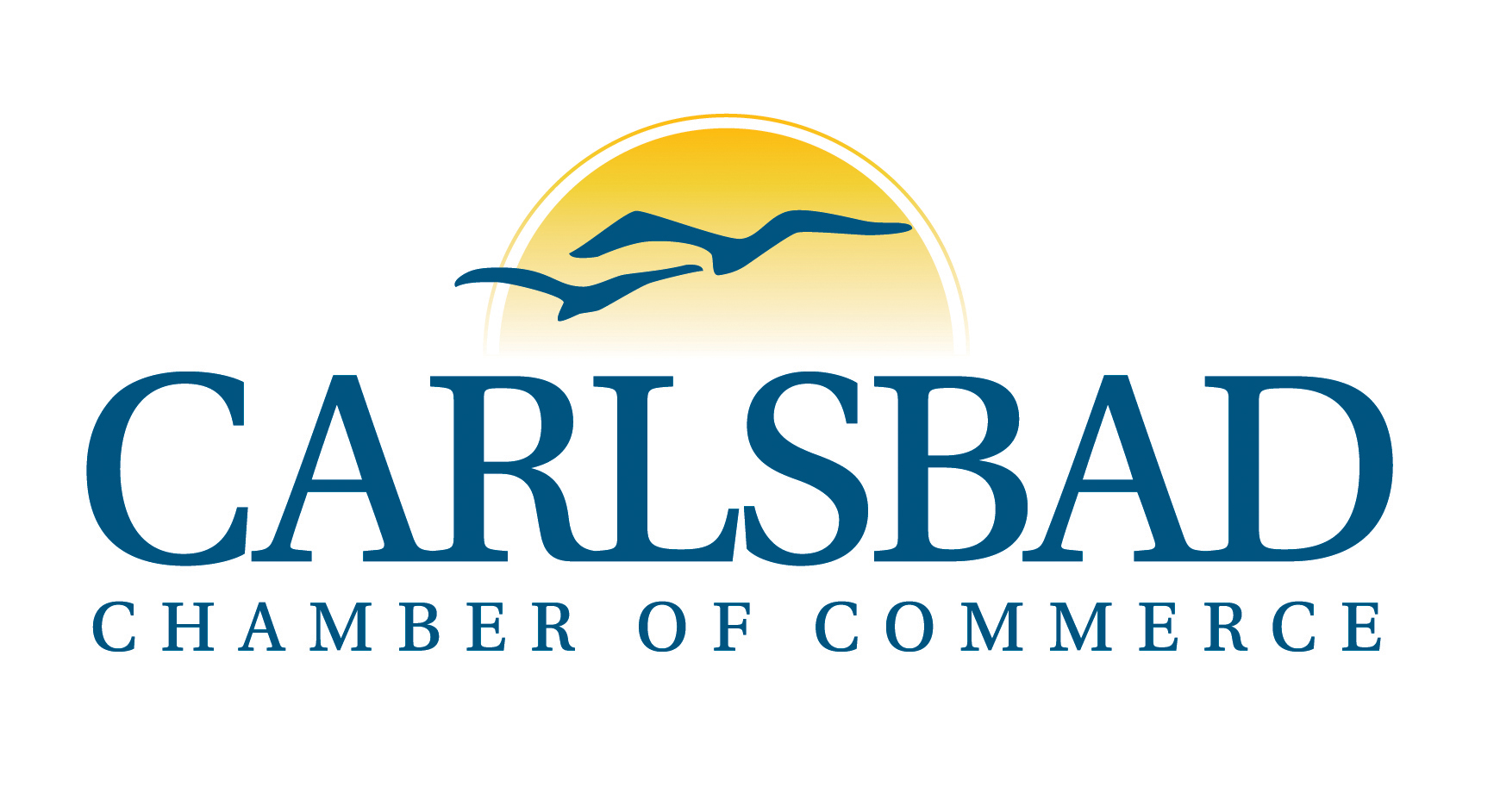 Carlsbad chamber selects Schanzenbach as new CEO