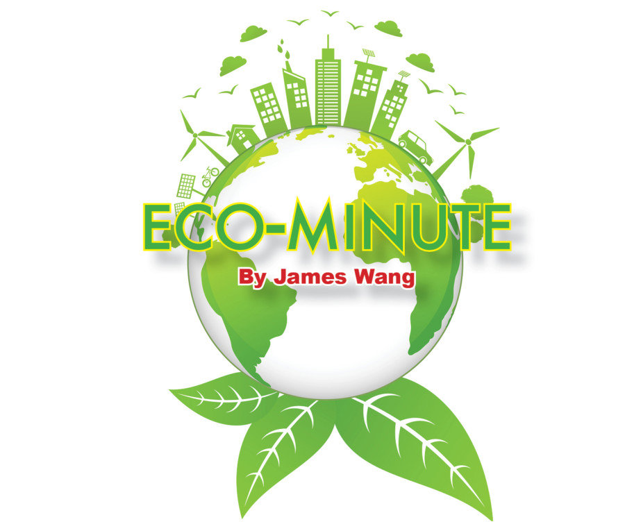 Eco-Minute: Always consider the entire lifecycle cost