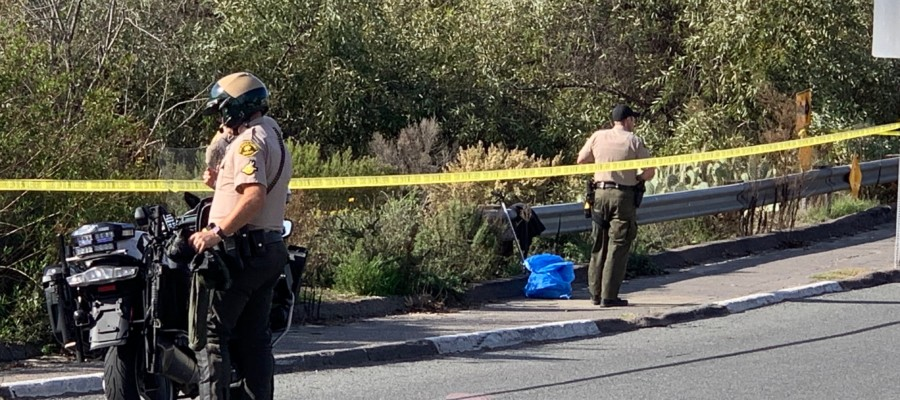 Body discovered in creek near Moonlight Beach