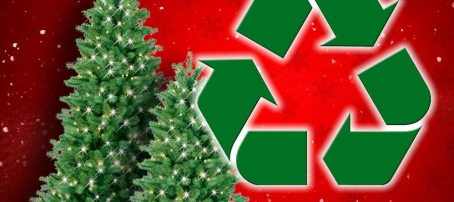 Waste Management recycles Christmas trees
