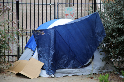 Homeless camps jeopardizing habitat in Vista