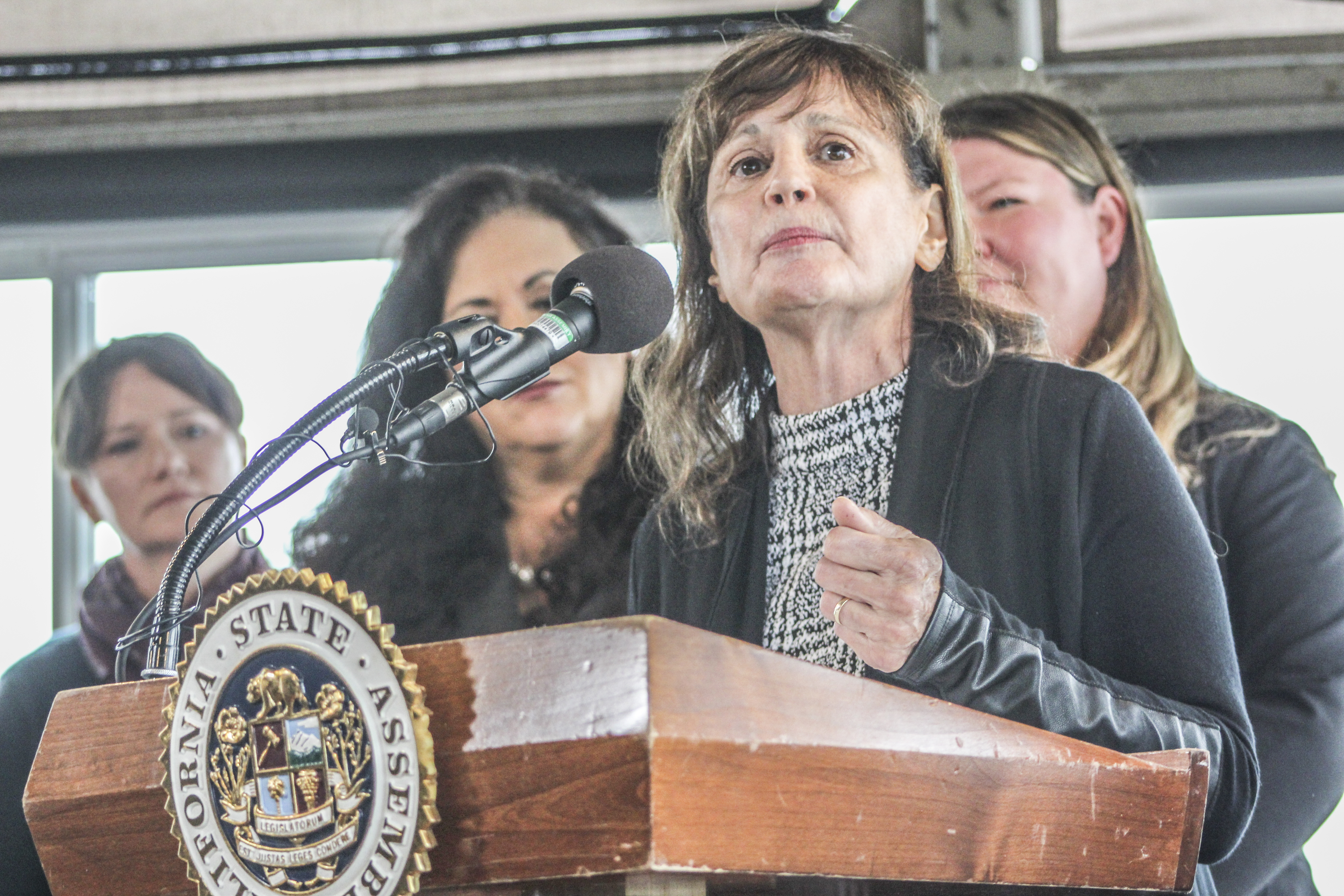Boerner Horvath introduces 'equal pay for equal play'