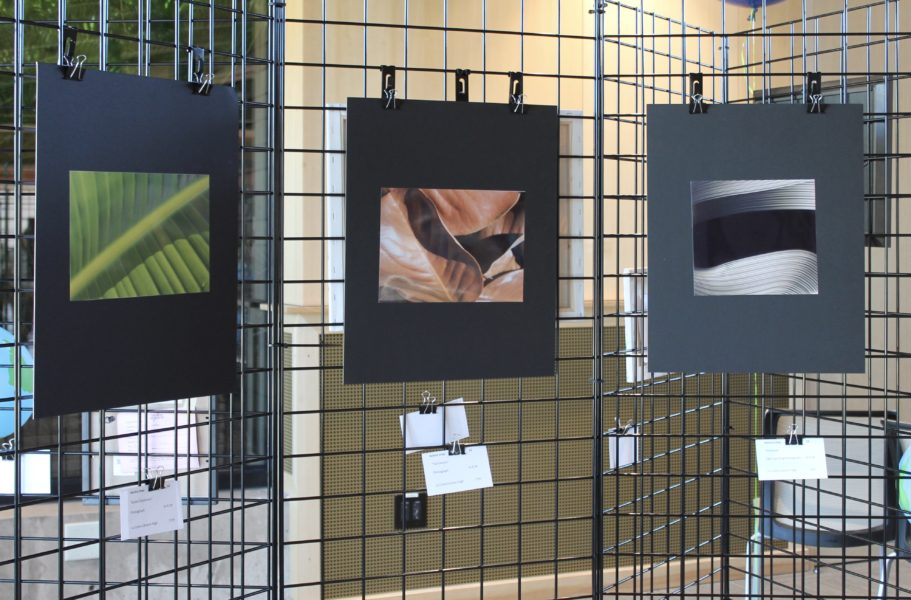 Youth Del Mar Art Show features local student artists