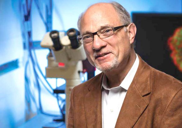 Above, Salk Professor Geoffrey Wahl, with a team of scientists, have uncovered details that may develop a new class of cancer-targeted therapeutics. Courtesy photo