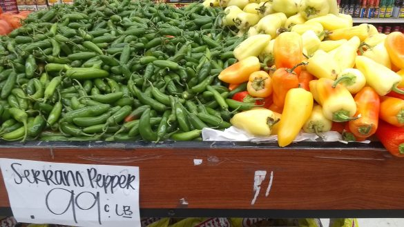 A bounty of all types of peppers abound at Primo Market, on West Vista Way in Vista. Photo by Jano Nightingale